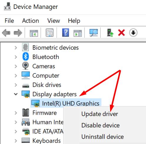 Actualice el controlador de gráficos de Windows 10