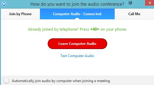 Salir del zoom de audio de la computadora