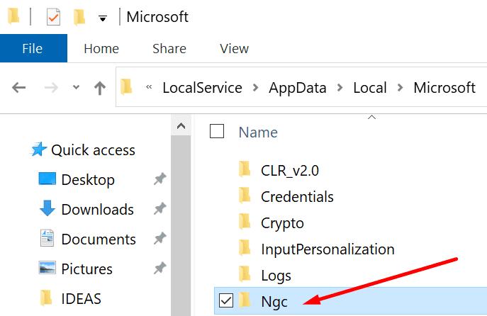 carpeta ngc Windows 10