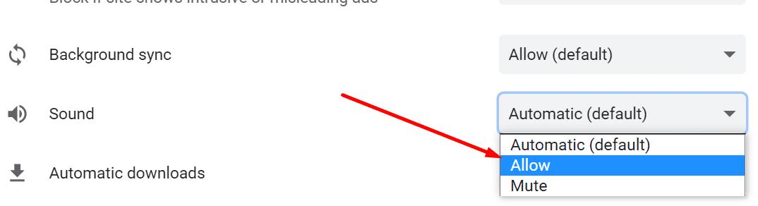 Permitir sonido de zoom en el navegador